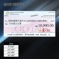 Mock Cheque